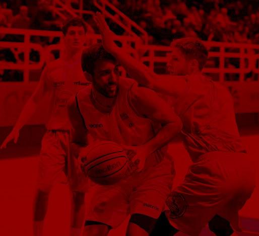 Fulgor Basket